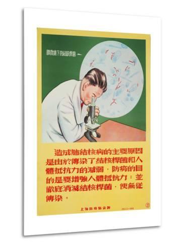 A Doctor Looks into a Microscope of Mycobacterium Tuberculosis--Metal Print