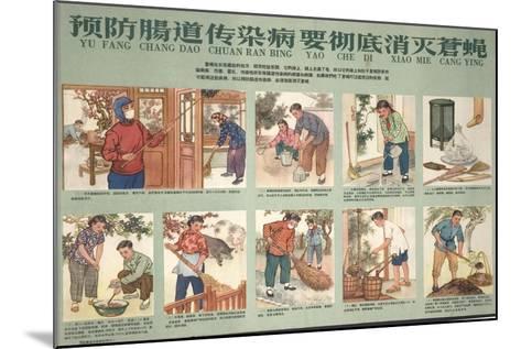 Housekeeping and Eliminating Flies--Mounted Art Print