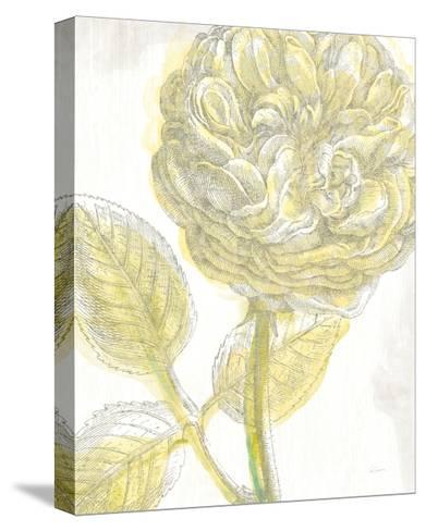 Belle Fleur Yellow III Crop-Sue Schlabach-Stretched Canvas Print