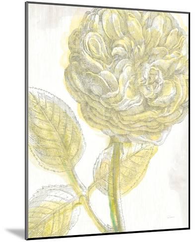 Belle Fleur Yellow III Crop-Sue Schlabach-Mounted Premium Giclee Print