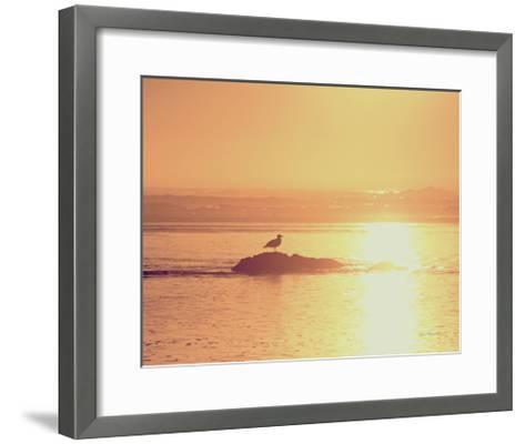 Kalaloch Sunset I Crop-Laura Marshall-Framed Art Print