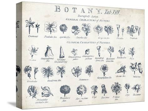 Botany Tab VIII Indigo and White-Wild Apple Portfolio-Stretched Canvas Print