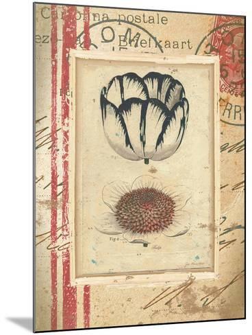 Tulip-Jo Moulton-Mounted Art Print