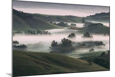 Dream Landscape, Tuscany in California, Petaluma Sonoma County-Vincent James-Mounted Photographic Print