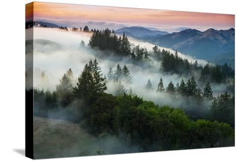 Night Comes Down Fog Rolls In, Northern California Coast-Vincent James-Stretched Canvas Print