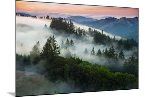 Night Comes Down Fog Rolls In, Northern California Coast-Vincent James-Mounted Photographic Print