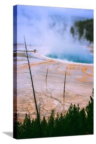 The Amazing Grand Prismatic Spring, Yellowstone National Park-Vincent James-Stretched Canvas Print