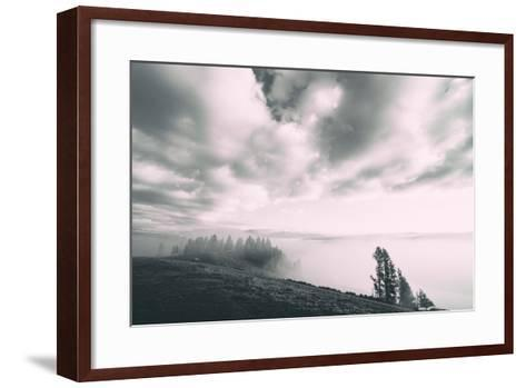 Dreamy Walk, Black and White, Hayden Valley, Yellowstone National Park-Vincent James-Framed Art Print