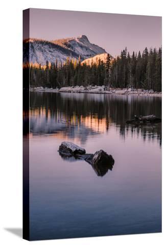 Peaceful Morning Reflection Yosemite Tioga Pass Tenaya Lake-Vincent James-Stretched Canvas Print