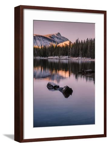 Peaceful Morning Reflection Yosemite Tioga Pass Tenaya Lake-Vincent James-Framed Art Print