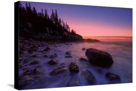 Atlantic Coast Sunrise, Maine, Acadia National Park-Vincent James-Stretched Canvas Print