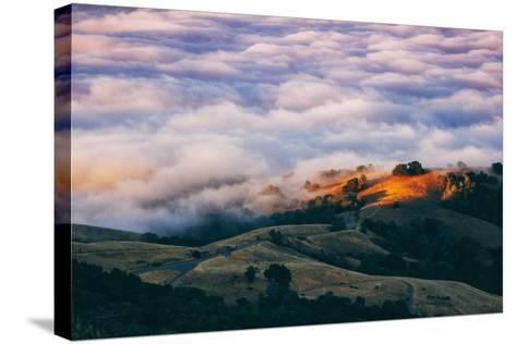 Morning Fog at Mount Diablo, California-Vincent James-Stretched Canvas Print