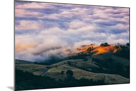 Morning Fog at Mount Diablo, California-Vincent James-Mounted Photographic Print