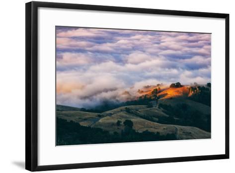 Morning Fog at Mount Diablo, California-Vincent James-Framed Art Print