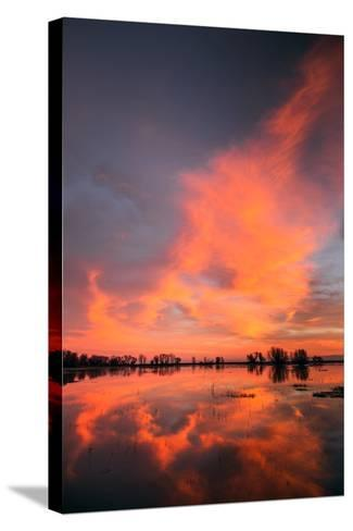 Marsh Sunset Reflections, Merced Wildlife Refuge-Vincent James-Stretched Canvas Print