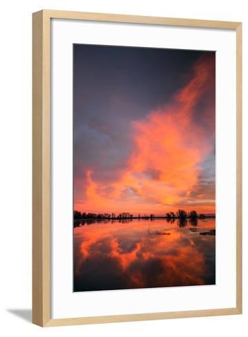 Marsh Sunset Reflections, Merced Wildlife Refuge-Vincent James-Framed Art Print