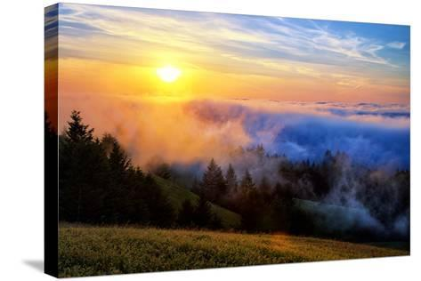 Fog and Light Mix Hills of Mount Tam California-Vincent James-Stretched Canvas Print