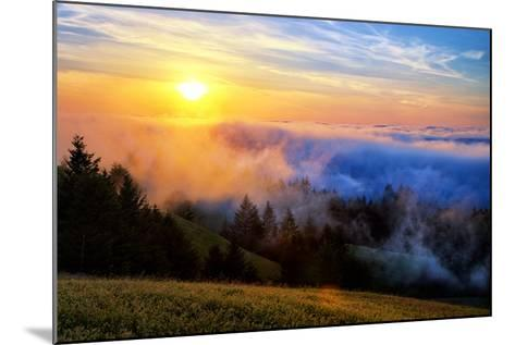 Fog and Light Mix Hills of Mount Tam California-Vincent James-Mounted Photographic Print