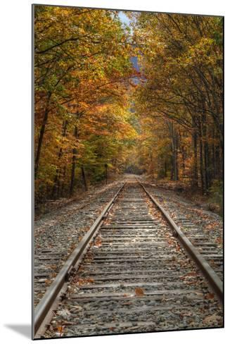 Autumn Railroad Tracks, White Mountain, New Hampshire-Vincent James-Mounted Photographic Print
