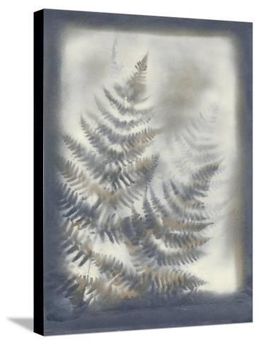 Shadows and Ferns VI-Renee W^ Stramel-Stretched Canvas Print