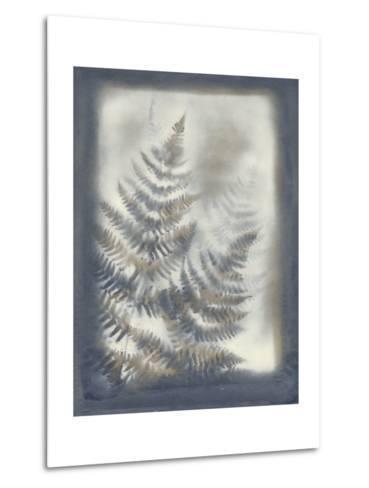 Shadows and Ferns VI-Renee W^ Stramel-Metal Print