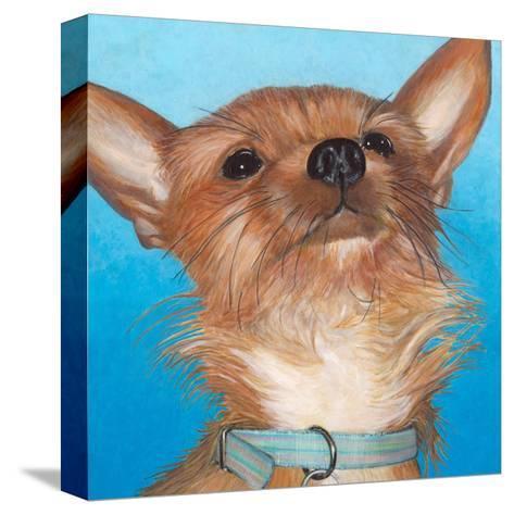 Dlynn's Dogs - Gratitude-Dlynn Roll-Stretched Canvas Print