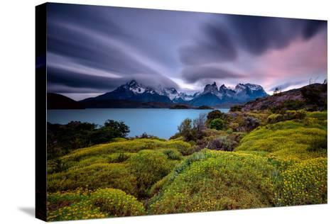A Patagonia Scenic with the Andes Mountains, a Lake, Green Growth, Wildflowers, and Clouds--Stretched Canvas Print