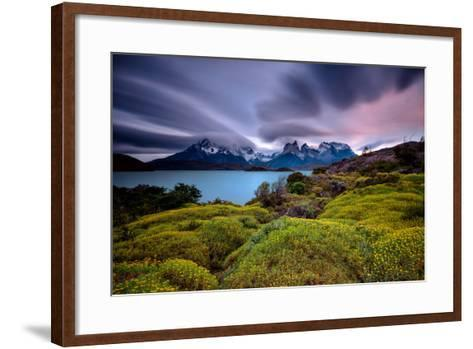 A Patagonia Scenic with the Andes Mountains, a Lake, Green Growth, Wildflowers, and Clouds--Framed Art Print