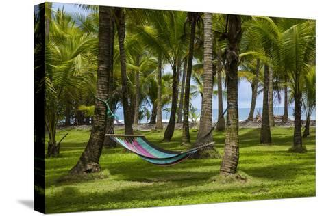 An Empty Hammock Suspended Between Palm Trees Along the Beach Near Parrita-Anand Varma-Stretched Canvas Print
