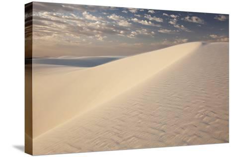 View of White Sand Dune at Sunrise in White Sands National Monument-Derek Von Briesen-Stretched Canvas Print
