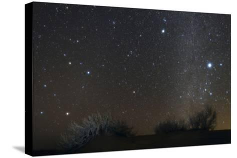 Constellations Leo and Hydra; the Milky Way; Saturn; Bright Stars Sirius and Procyon, over Desert-Babak Tafreshi-Stretched Canvas Print
