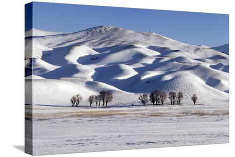 A Snow-Covered Winter Landscape in the Alborz Mountains of Iran-Babak Tafreshi-Stretched Canvas Print
