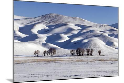 A Snow-Covered Winter Landscape in the Alborz Mountains of Iran-Babak Tafreshi-Mounted Photographic Print