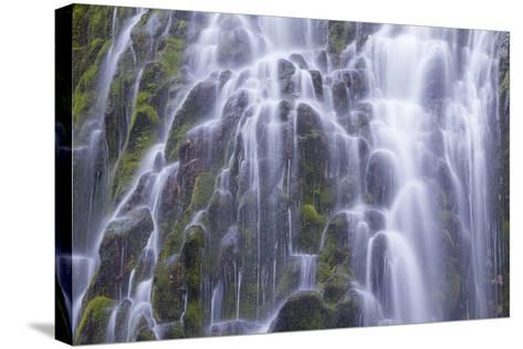 The Lower Proxy Falls Cascade over Moss Covered Basalt in the Three Sisters Wilderness Area-Greg Winston-Stretched Canvas Print