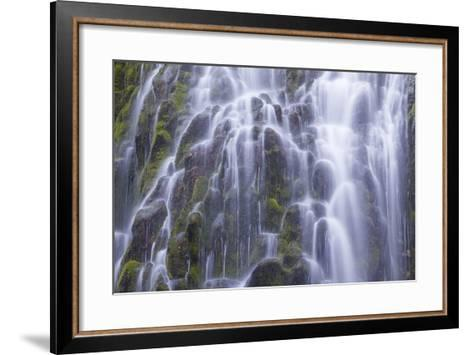 The Lower Proxy Falls Cascade over Moss Covered Basalt in the Three Sisters Wilderness Area-Greg Winston-Framed Art Print