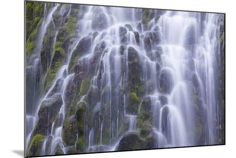 The Lower Proxy Falls Cascade over Moss Covered Basalt in the Three Sisters Wilderness Area-Greg Winston-Mounted Photographic Print