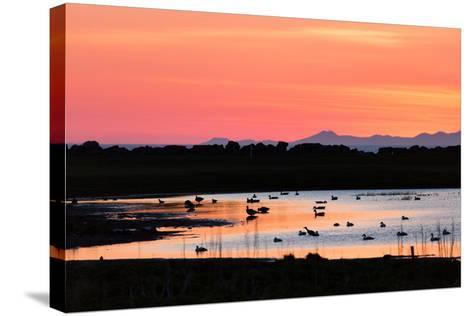 Midnight Sun, Reykjavik, Iceland--Stretched Canvas Print
