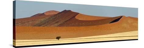 View of Red Dunes, Sossusvlei, Namib Desert, Namib-Naukluft National Park, Namibia--Stretched Canvas Print