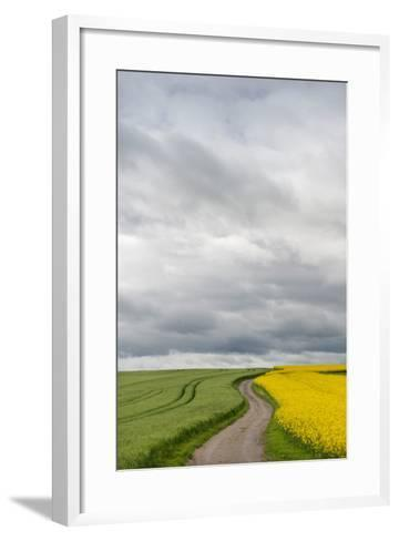 Dirt Road Passing Through Grain and Rapeseed Fields, Baden-Wurttemberg, Germany--Framed Art Print
