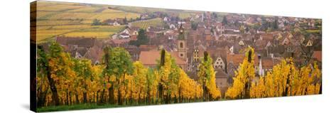 Elevated View of the Riquewihr and Vineyards in Autumn, Alsace, France--Stretched Canvas Print