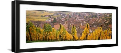 Elevated View of the Riquewihr and Vineyards in Autumn, Alsace, France--Framed Art Print