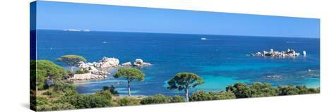 Palombaggia Beach Near Porto Vecchio, Corse-Du-Sud, Corsica, France--Stretched Canvas Print