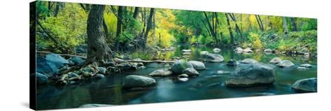 Stream in Cottonwood Canyon, Sedona, Arizona--Stretched Canvas Print