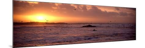 Sunrise over the Plouharnel Beach, Morbihan, Brittany, France--Mounted Photographic Print