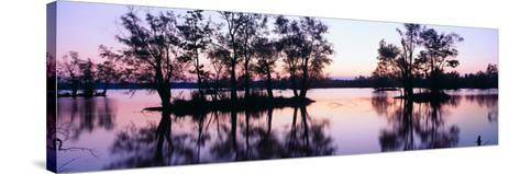 Sunset over Wildlife Refuge of Lake Fausse Pointe State Park, Louisiana--Stretched Canvas Print