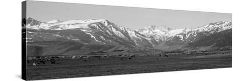 Sierra Mountains, California--Stretched Canvas Print