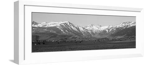 Sierra Mountains, California--Framed Art Print