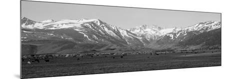 Sierra Mountains, California--Mounted Photographic Print