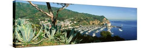 Casino Building and Avalon Harbor, Avalon, Catalina Island, California--Stretched Canvas Print