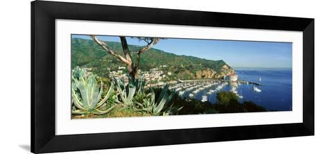 Casino Building and Avalon Harbor, Avalon, Catalina Island, California--Framed Art Print